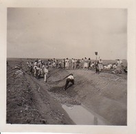 Foto Deutsche Soldaten Mit Dorfbevölkerung Beim Graben Eines Kanals - 2. WK - 5,5*5,5cm (35112) - Krieg, Militär