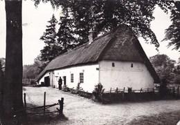 Domein Bokrijk, Openluchtmuseum. Kempisch Boerderijje Uit Helchteren 1815 (pk46809) - Genk