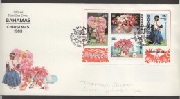 1985  Christmas Issue  Local Paintings -  Souvenir Sheet On FDC - Bahamas (1973-...)