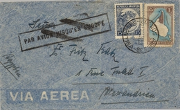 1923 , ARGENTINA , BUENOS AIRES - ALEJANDRIA , MARCA DE ENCAMINAMIENTO , LLEGADA AL DORSO. - Argentine