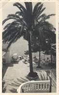 Palma De Mallorca - Hotel Rocamar - Palma De Mallorca