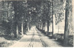 Bruxelles - CPA - Brussel - Forest - Parc De Mme Duden - Forest - Vorst