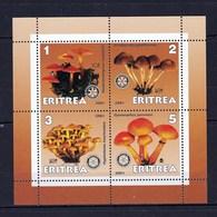 4 Timbres ** Qualité TTB Champignon  D' Eritrée En Feuillet  ( Mushroom  Cogumelo  Setas) - Pilze