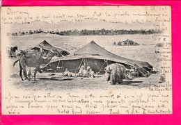 Cpa Carte Postale Ancienne  - Tunisie Campement De Nomades - Tunisia
