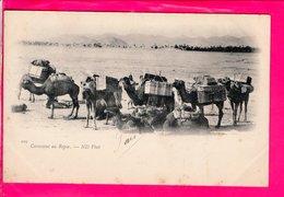Cpa Carte Postale Ancienne  - Tunisie Caravane Au Repos - Tunisia