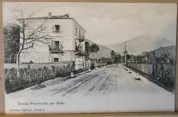 SALTO CANAVESE, STRADA PROVINCIALE PER SALTO, VIAGGIATA 1908 - Altre Città