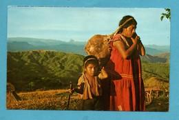 Panama India Guaymi Con Su Hijo ( ( Format 9 X 14 ) - Panama