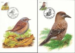 D- [13893] Carte-CMAX 3749/50, 2008, MB - BUZIN, Oiseau, Accenteur Mouchet, CasseNoix Moucheté - Cartes-maximum (CM)