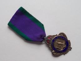 GRAND LODGE Of ENGLAND ( Initiated 18-9-83 Sir JOHN SHORT Lodge N° 2975 ) MASONIC ( 12.1 Gr. - See Photo) Medal ! - Royaume-Uni