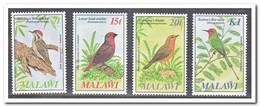 Malawi 1985, Postfris MNH, Birds - Malawi (1964-...)