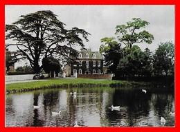 CPSM/gf URCHFONT (Angleterre)   Vue Partielle, étang Et Canards...G144 - Angleterre