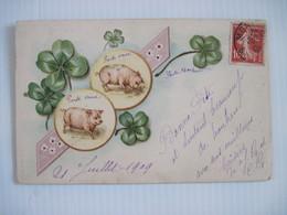 CPA  Carte Porte Bonheur Trele A Quatre Feuilles Et Cochons Voyagée En 1909 Dos Simple  T.B.E. Colorisée - Cerdos