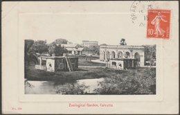 Zoological Gardens, Calcutta, Bengal, 1915 - Perris & Co Postcard - India
