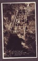 1920s Unused City Of Blue Mountains New South Wales Australia Postcard Sienic Train Railway Katoomba 1 Port Macquarie - Port Macquarie