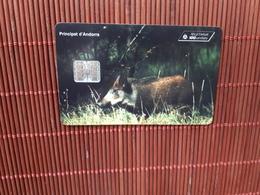 Phonecard Andora Animal Used Only 10.000 Made Rare - Andorra