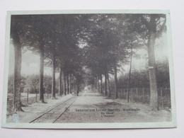 Sanatorium LIZZIE-MARSILY Westmalle De Dreef / L'Avenue ( Thill ) Anno 19?? ( Voir Photo Svp ) ! - Malle