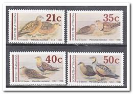 Bophutswana 1990, Postfris MNH, Birds - Bophuthatswana