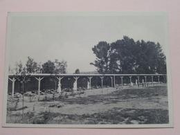 """Preventorium """" Léon Poriniot """" BIEZ ( Hance ) Anno 19?? ( Voir Photo Svp ) ! - Grez-Doiceau"""