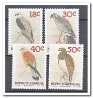 Bophutswana 1989, Postfris MNH, Birds - Bophuthatswana