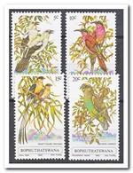 Bophutswana 1980, Postfris MNH, Birds - Bophuthatswana