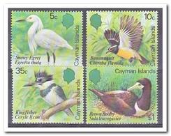 Kaaiman Eilanden 1984, Postfris MNH, Birds - Kaaiman Eilanden