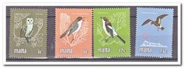 Malta 1981, Postfris MNH, Birds - Malte
