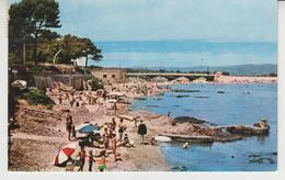 708 /  SAINT - AYGULF   /  La Plage  1965 - Saint-Aygulf