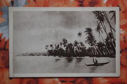 CAROLINAS Y MARIANAS Old Vintage Postcard - Palm Trees - Islas Maríanas