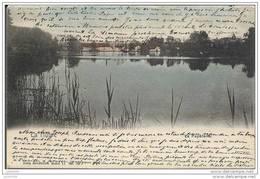 LA HULPE ..-- Brt Wall. ..-- La Papeterie . Nels 11 , N° 80 . 1905 Vers BASTOGNE ( MrJoseph Pirsoul ) . Voir Verso . - La Hulpe