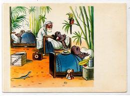 CPSM Pot De Chambre Chamber Por Hippopotame Médecine Non Circulé - Hippopotamuses