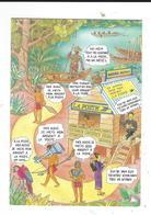 CPM Publicité Pou Caisse D'épargne De La Guyane Neuve TBE 1989 - Otros