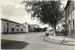 66. ST LAURENT DE LA SALANQUE.  LE FOYER RUAL - Andere Gemeenten