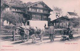 Suisse, Attelage De Boeufs, Ochsengespann (3641) - Attelages