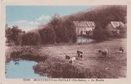 MONTUREUX LES BAULAY---- MOULIN - France