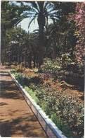 Melilla - Paseo Del Parque - Melilla