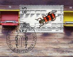 Le Clairon Des Abeilles Trichodes Apiarius Coléoptère Ruche Abeille Beetle Polen Bee Honey - Insectos