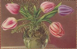 Bloem Flower Fleur  Flor Fiore Blume Tulp Tulip - Blumen