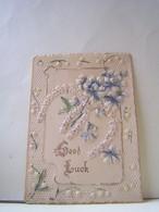 CARTE FANTAISIE RHODOID. GOOD LUCK.  100_5596b - Cartes Postales