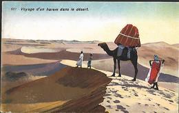 Voyage D' Un Harem Dans Le Désert - Autres