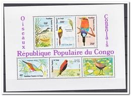 Congo 1980, Postfris MNH, Birds - Congo - Brazzaville