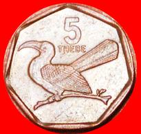 # BIRD: BOTSWANA ★ 5 THEBE 1998! LOW START ★ NO RESERVE! - Botswana