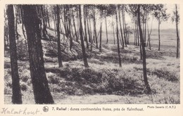 """Kalmthout, Relief, Dunes Continentales Fix""""es Pres De Kalmthout  (pk46908) - Kalmthout"""