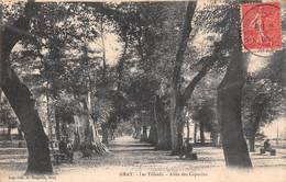 Gray (70) - Les Tilleuls - Allée Des Capucins 1906 - Gray