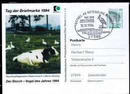 ALLEMAGNE  Carte PAP   1994   Oiseaux  Vache - Picotenazas & Aves Zancudas
