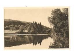 Foret De Réno - L'étang De Brochard - 175 - Frankrijk