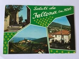 SALUTI DA FALTONA- VIAGGIATA FG - Arezzo