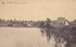 Bornem, Bornhem, Mannewiel In Rijkenhoek (pk46937) - Bornem