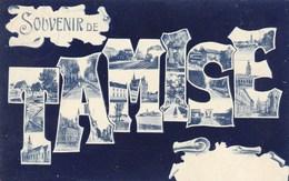 Temse, Temsche, Souvenir De Tamise (pk46938) - Temse