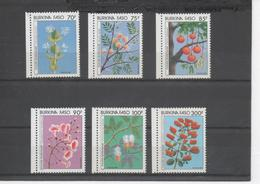 BURKINA FASO - Flore - Fleurs : Acacia Seyal (gomme Arabique), Parkia Biglobosa (Néré), Calotropis Procera, Combretum - Burkina Faso (1984-...)