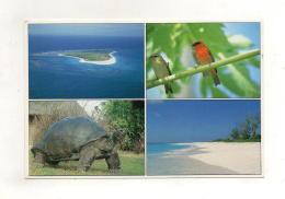 SEYCHELLES - Bird Island - Seychelles